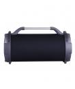 boxa portabila bluetooth ABTS-13K